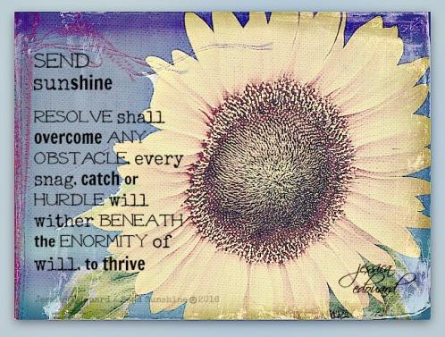thrive_c