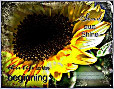 beginning_c