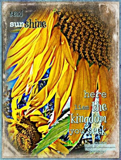 kingdom_c